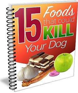 15 Foods That Could Kill Your Dog
