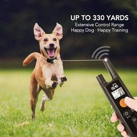 Dog Training Rechargeable Collar With 3 Modes