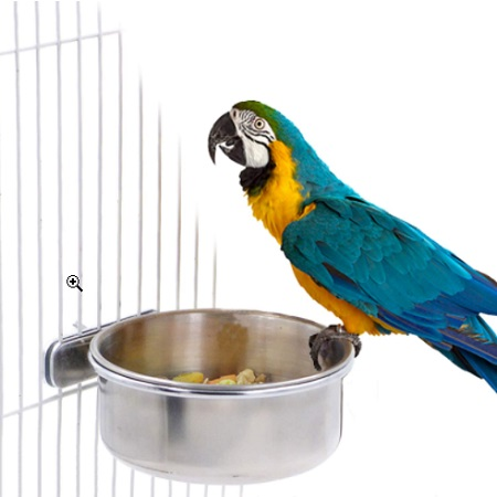 BWOGUE Parrot Feeding Cups With Clamp Stainless Steel